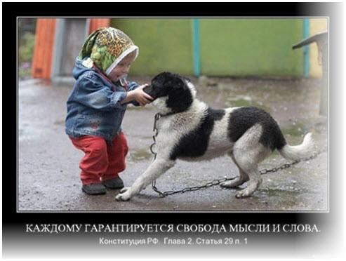 Разговор с собакой