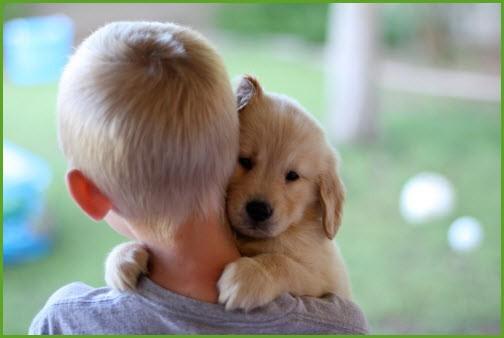 Заботливый мальчик нянчится с щенком
