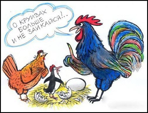 Курица побывала в круизе