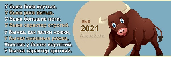 год быка фото 427