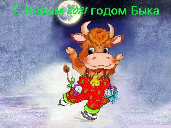 год быка фото 371