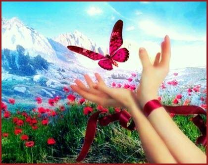 Фото с бабочкой