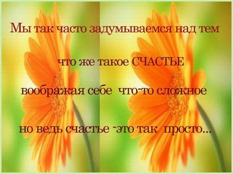 Счастье в простом