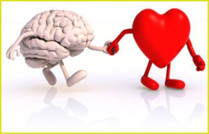 Сердце важнее рассудка