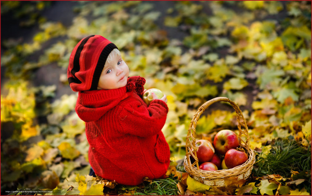 Девчушка набрала корзинку яблок