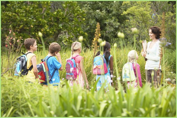 Дети с учителем на природе