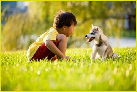 Фото мальчика с щенком