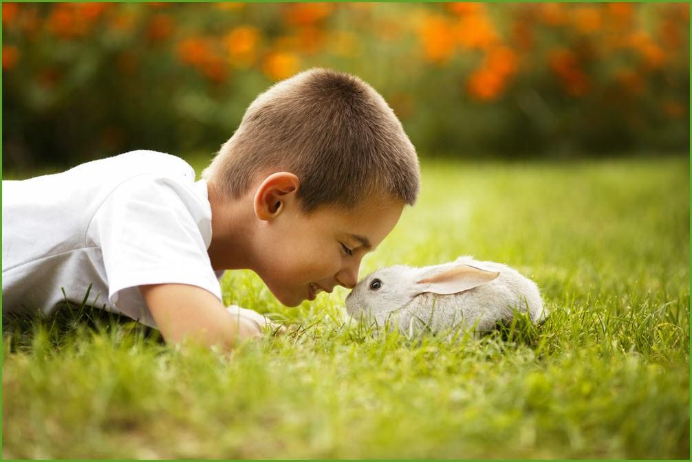 Фото мальчика и кролика