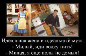 Чудо-картинка об идеальных муже и жене