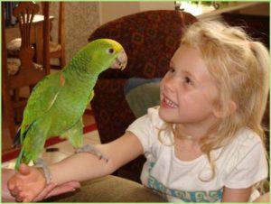 Девочка учит попугая говорить