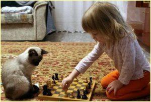 Девочка от скуки играет с котом