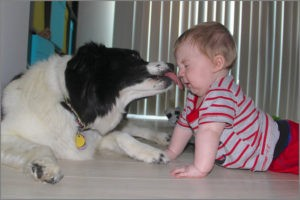 Забавный малыш и собака