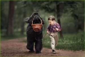 Мальчуган и пёс с корзинкой