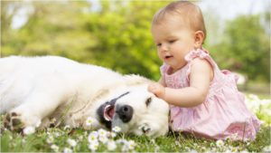 Девочка гладит собаку