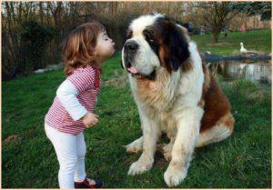 Малютка и пёс