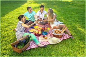 Знатный пикник на зелёной лужайке