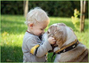Малыш дружит с собакой