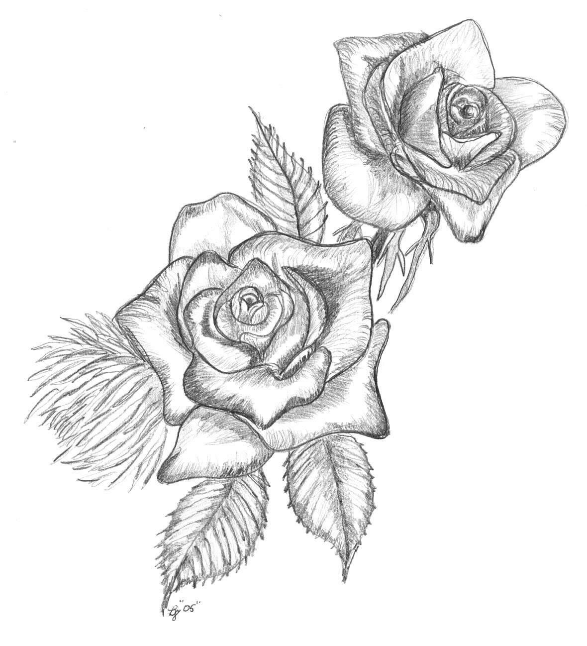 Срисовка розы