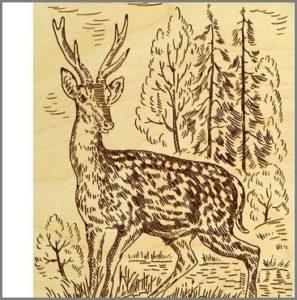 Картинка олень