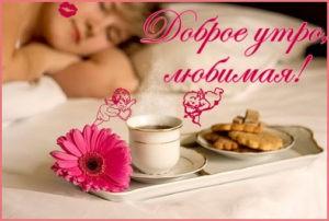 Проснись дорогая