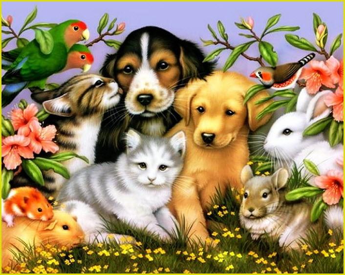Картинка с животными
