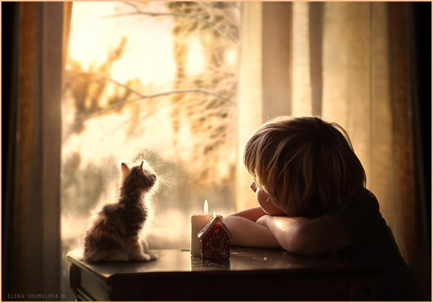 мальчик с котёнком