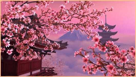 Картинки на рабочий стол сакура