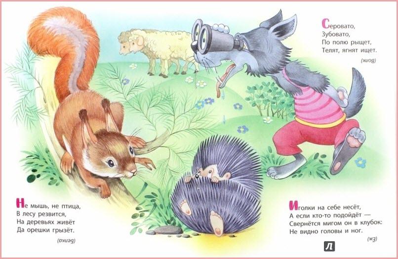 Загадки о животных
