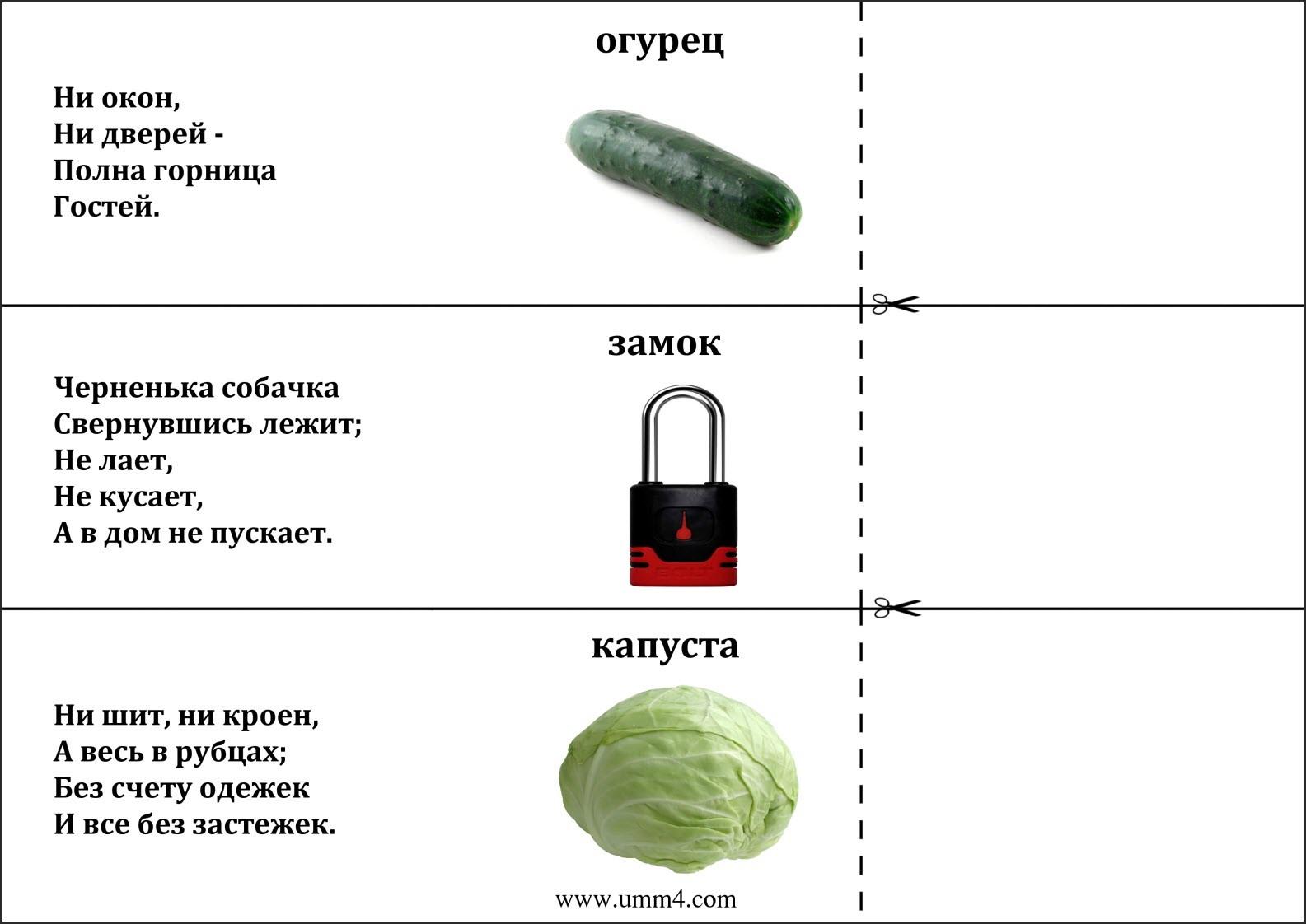 загадки овощи