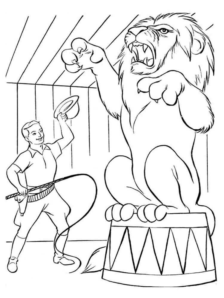 лев в цирке рисунок 32