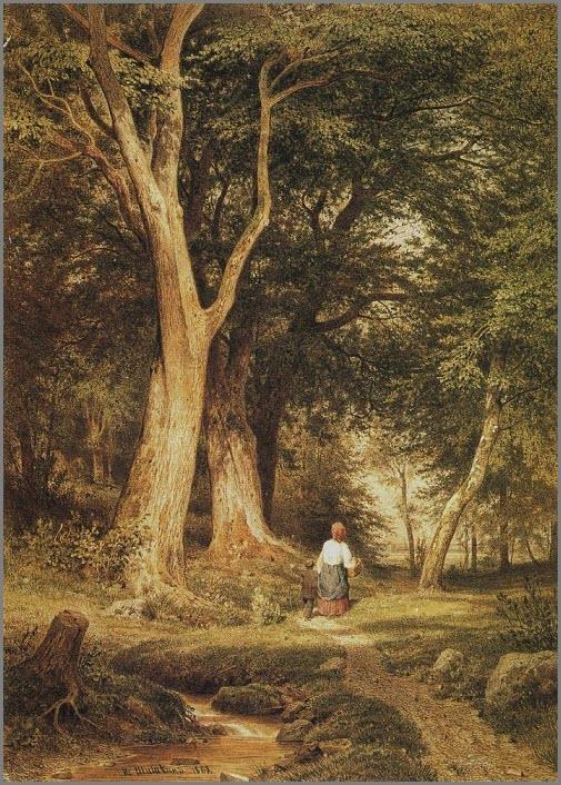Дремучий лес фото