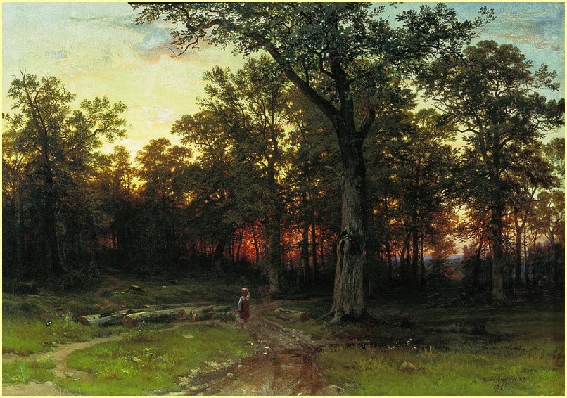 Вечерний лес фото