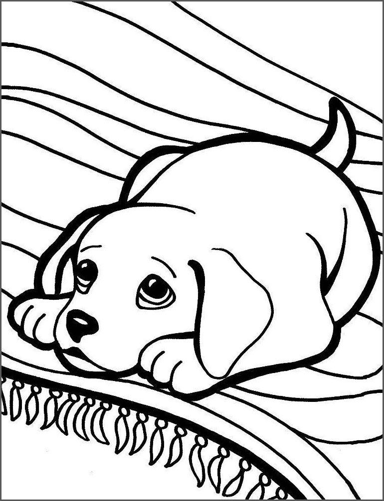 Собака для раскрашивания