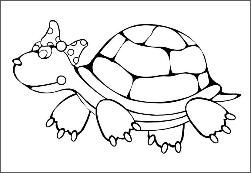 Картинка черепаха