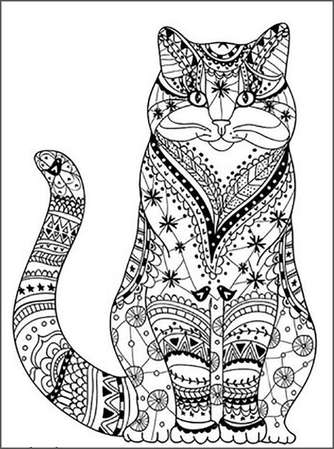 Кот мандала
