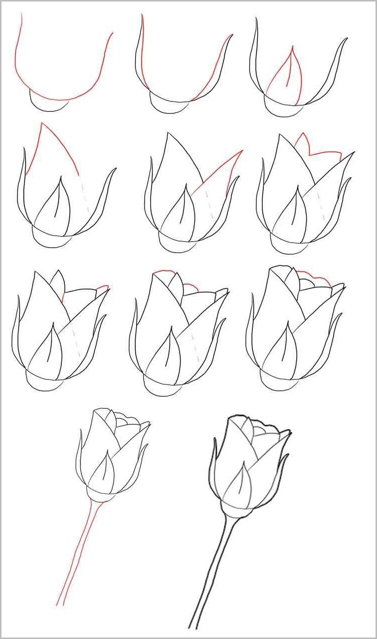 Розу нарисовать