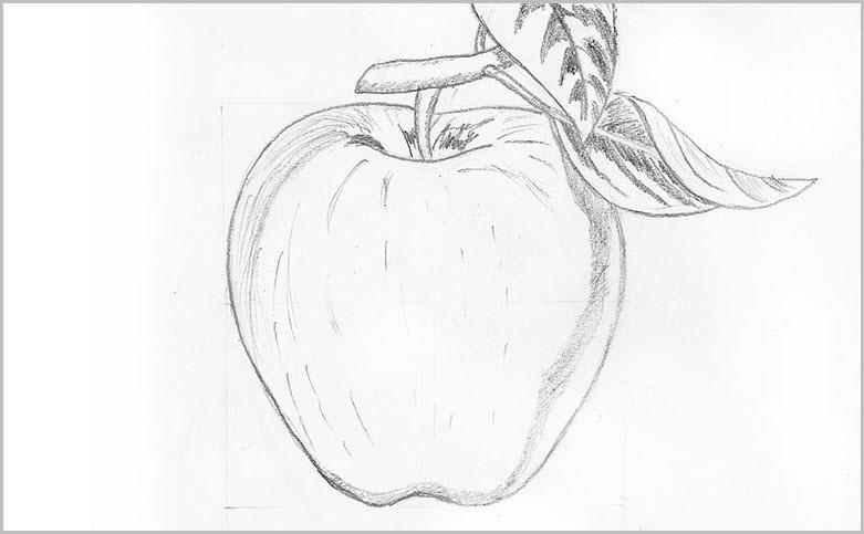 Яблоко для срисовки