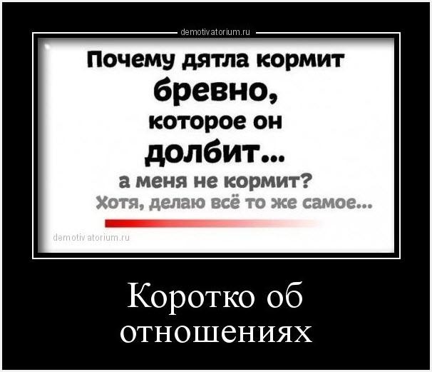 Дятел демотиватор
