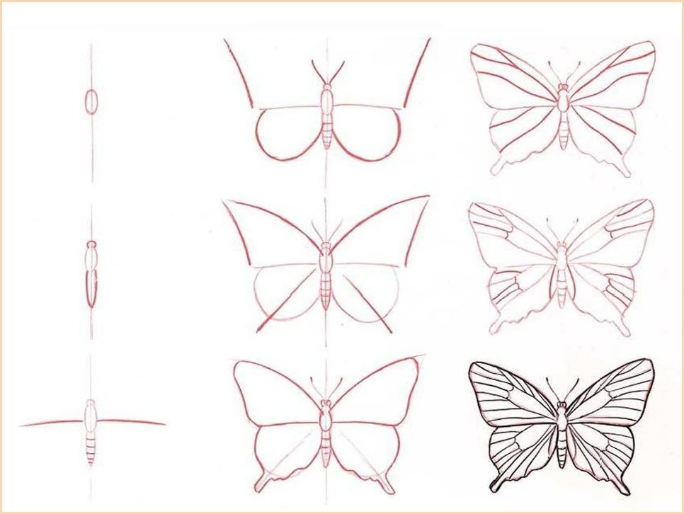 Бабочку рисовать