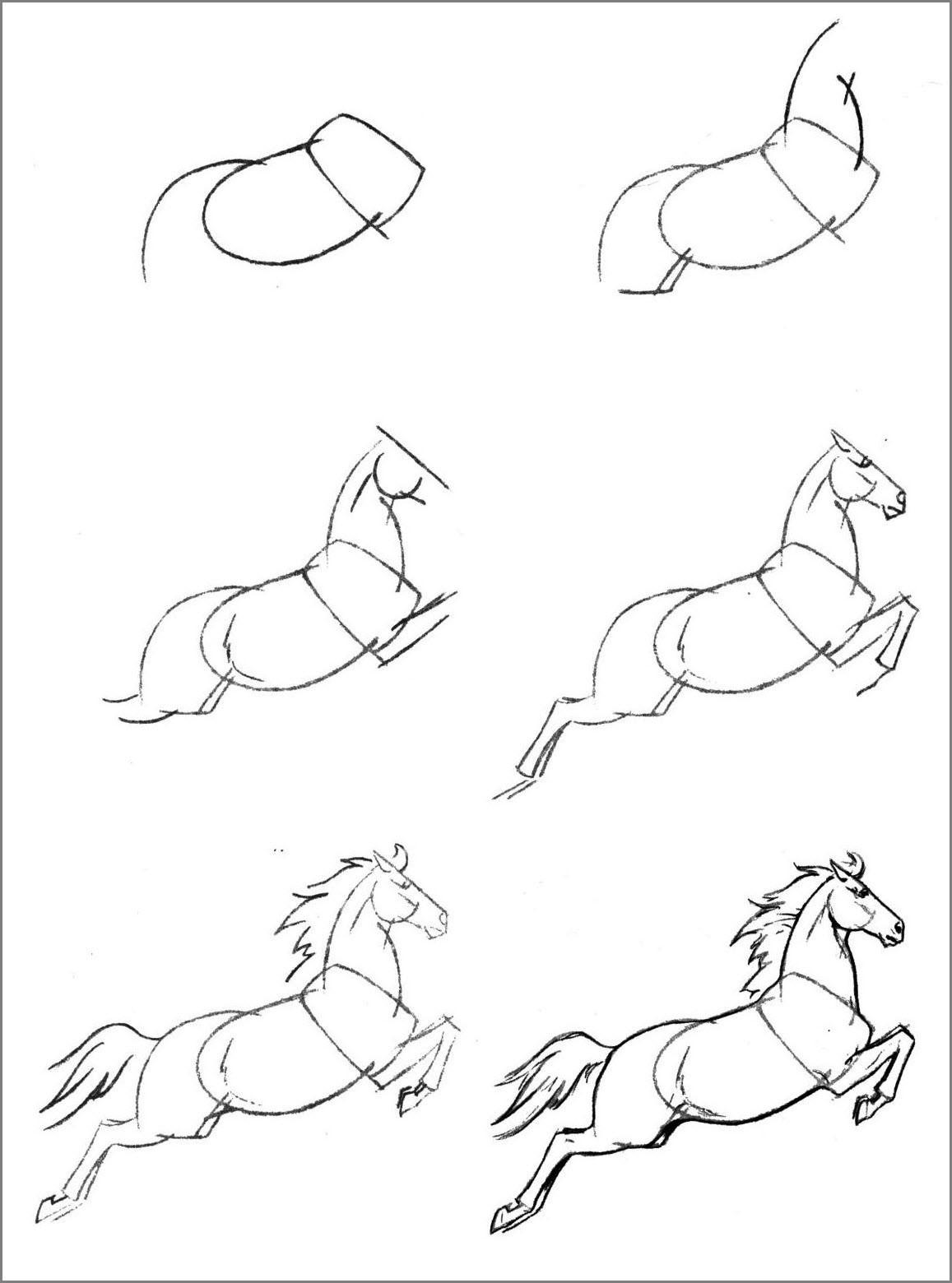 Лошадь поэтапно нарисовать