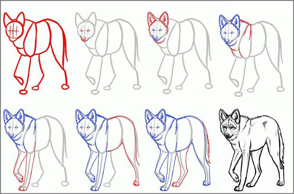 Волки рисунок