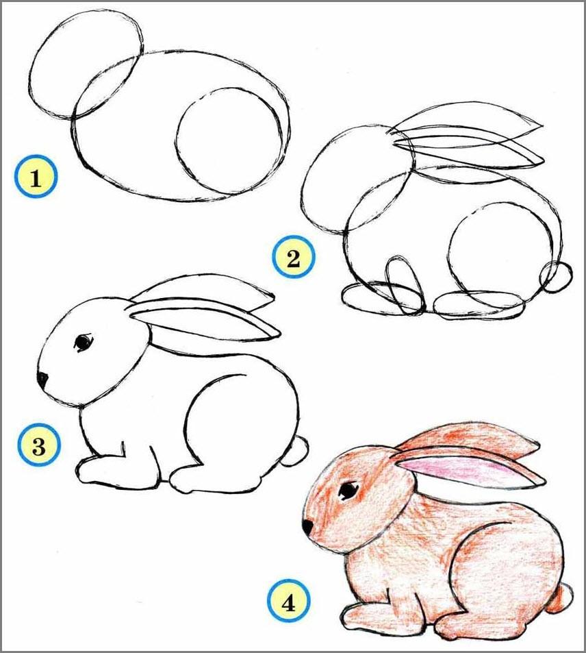 Зайца срисовать