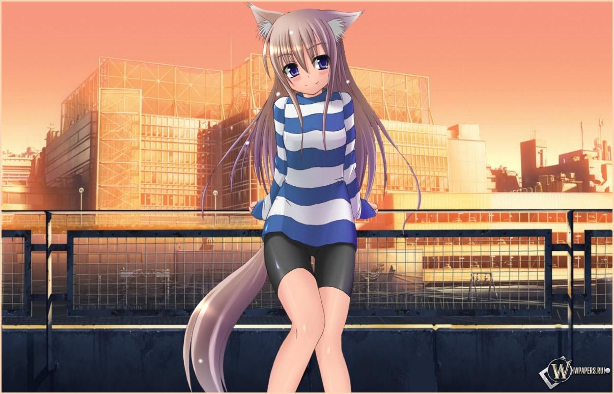 девушка аниме в лосинах
