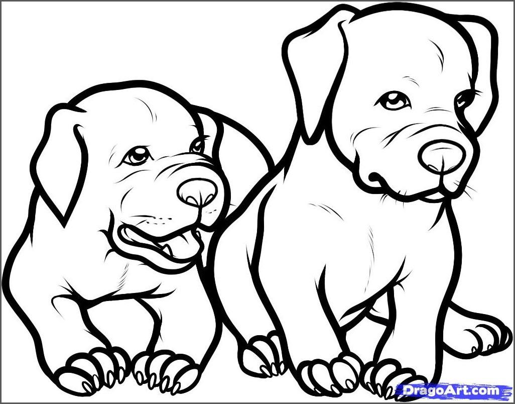 собаки для срисовки