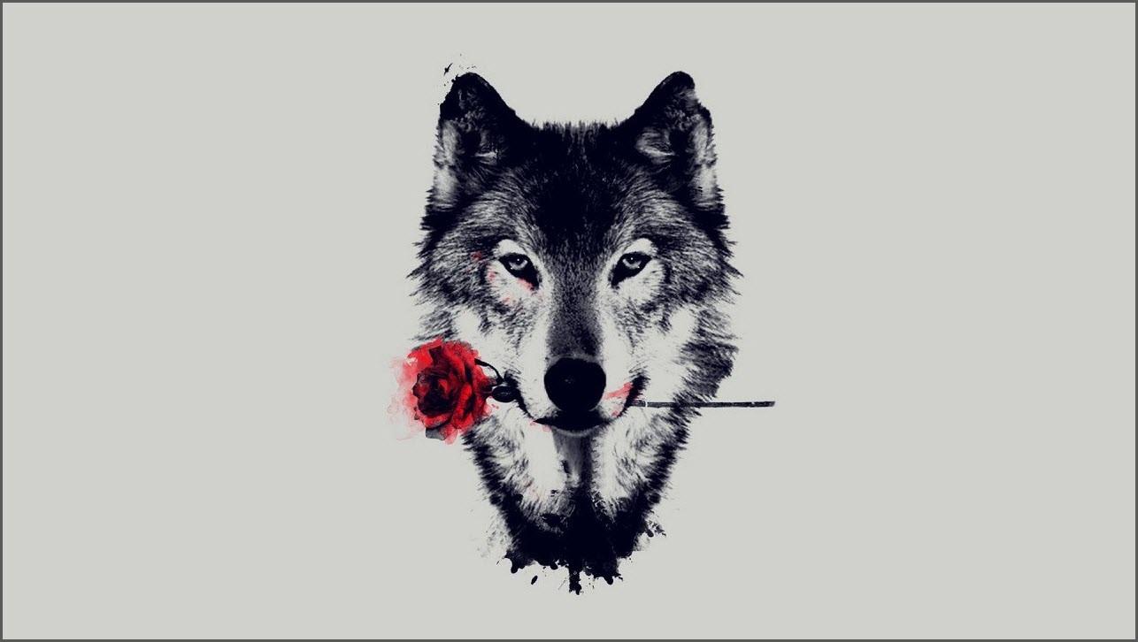 аниме волк 8