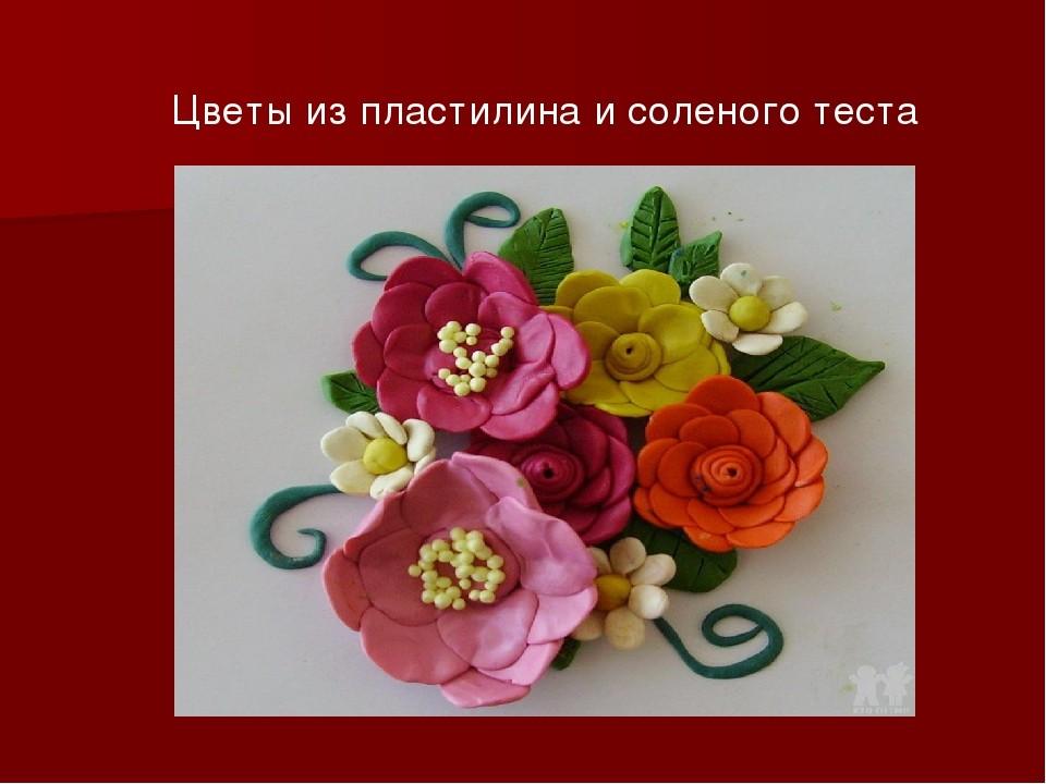 Цветы из пластилина 77