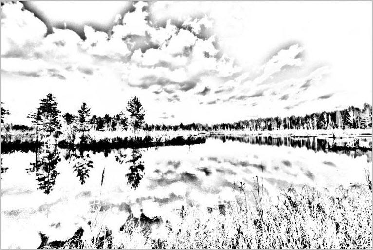 манга природа 3