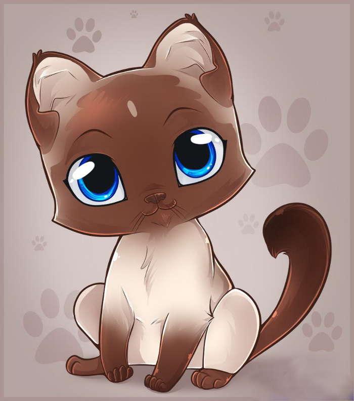 аниме кот