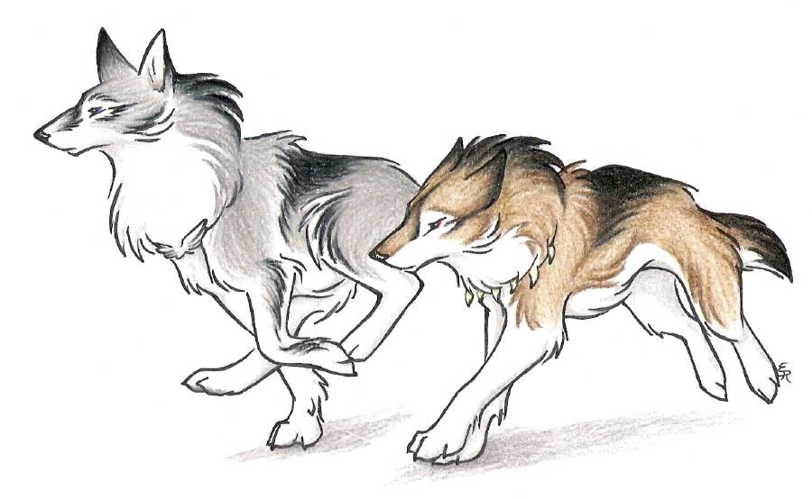 Аниме волки 6