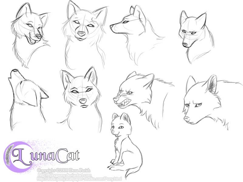 аниме волки 4